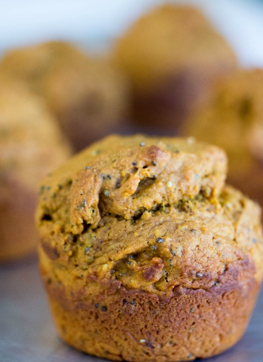 Chocolate Pumpkin Banana Muffins - No Diets Allowed