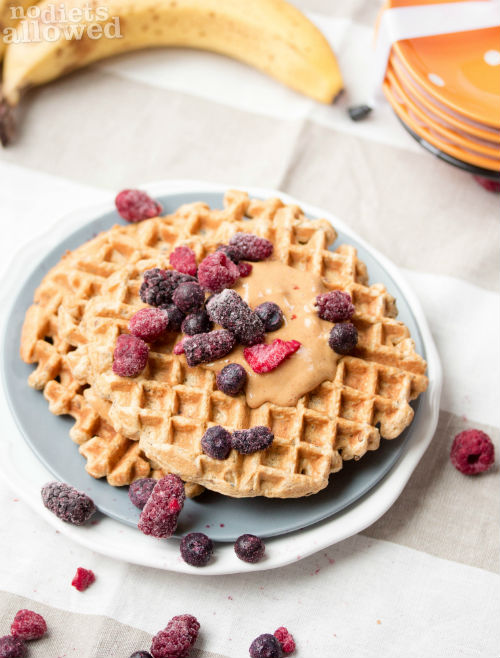 whole grain waffles- No Diets Allowed (1 of 1)
